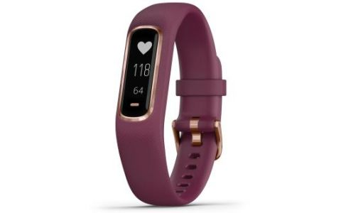 Garmin Vivosmart 4 Fitness Activity Tracker - Small/Medium - Merlot/Rose Gold