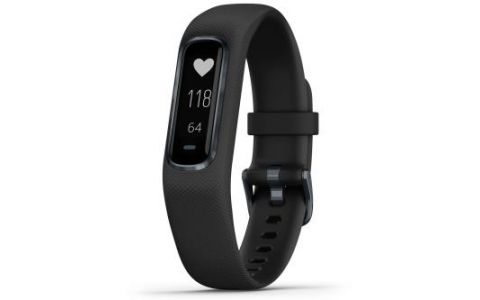Garmin Vivosmart 4 Fitness Activity Tracker Large - Black/Slate